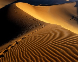 footprints_in_the_sand-1280x1024